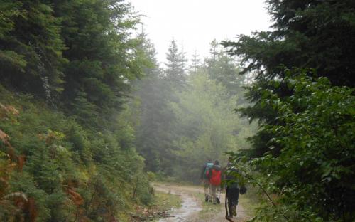 Περπατώντας από τα Επινιανά προς την Αγραπιδιά