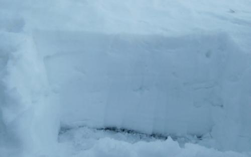 Τομή χιονιού