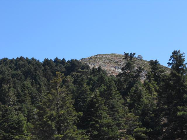 Η κορυφή Κιβούρι