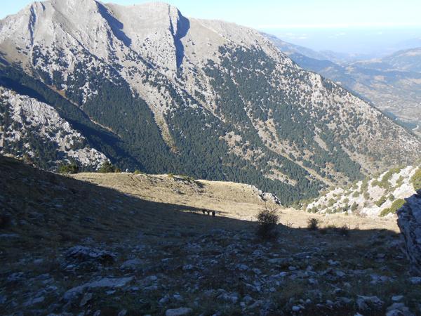 Θέα από την κορυφή προς Καλλιφώνι